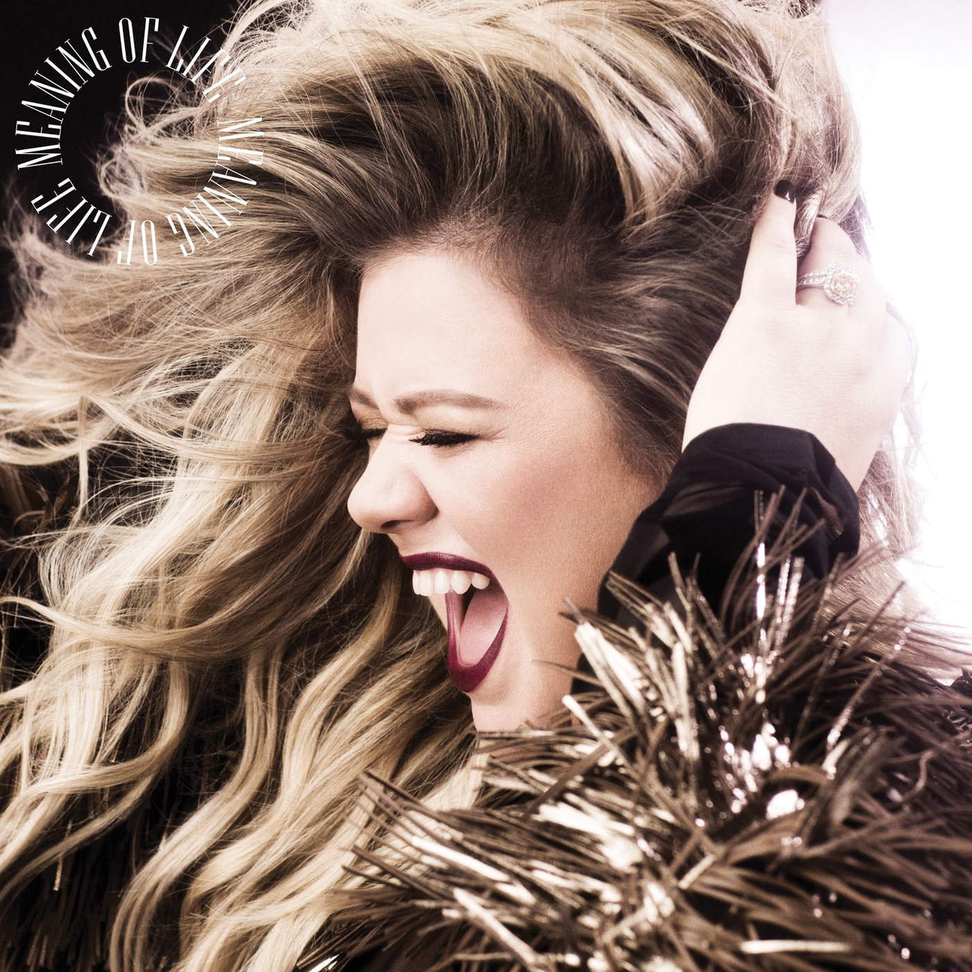 Kelly Clarkson - Meaning of Life - Single