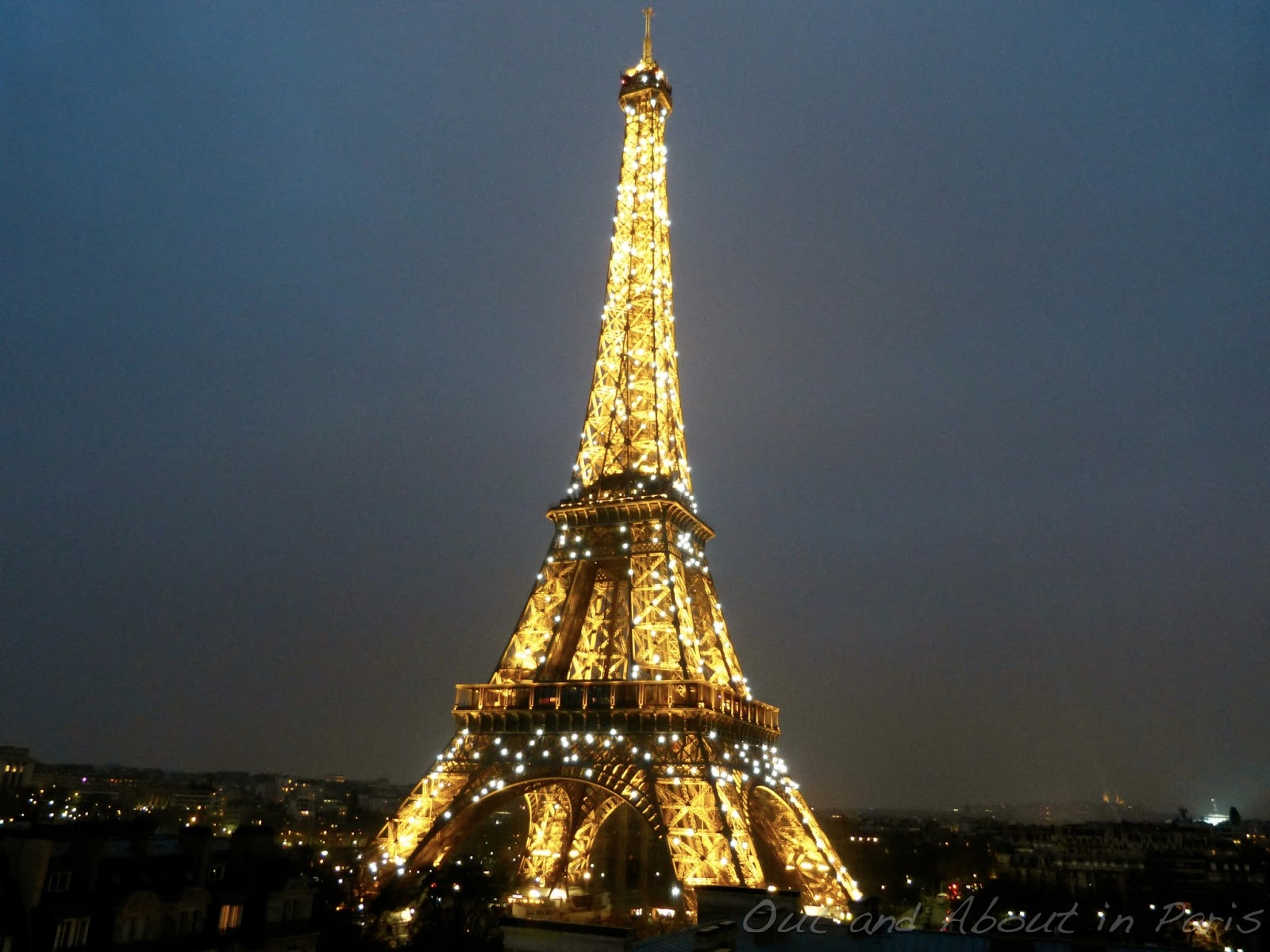 dinner at the eiffel tower