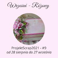 ProjektScrap - Wrzesień