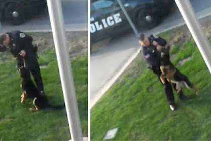 Policeman from Indiana was secretly filmed while he was a.b.u.s.i.n.g K9 dog, video spreads in lightning speed