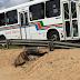 Pista da BR-101 sul com risco de ceder em Neópolis