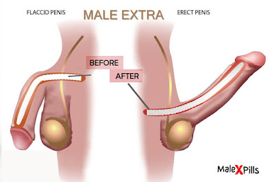 Buy Organic Penis Enlargement Pills: Male Extra Before and