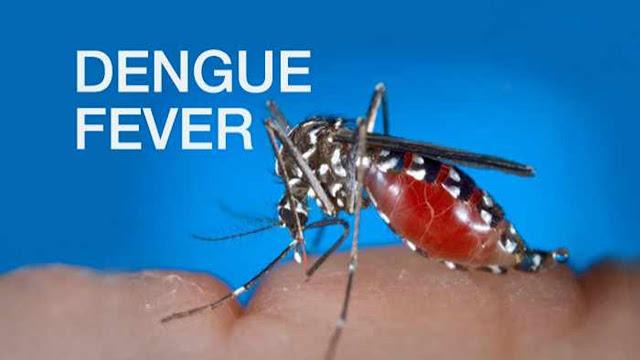 Symptoms For Dengue In Child