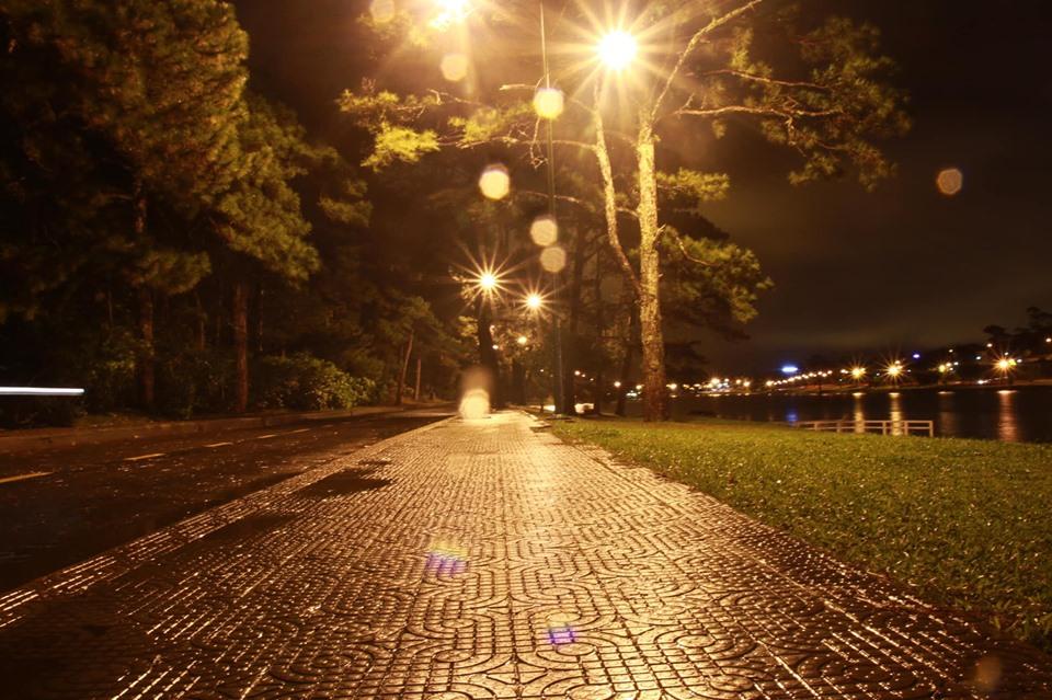 Một Đà Lạt lung linh, quyến rũ dưới màn mưa đêm - Ảnh: Phạm Tuấn Tú
