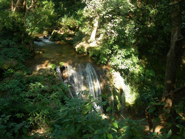 fresh water fall in  jungle nainital