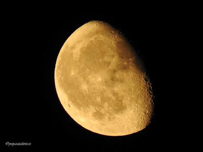 Luna fotografie Nikon,