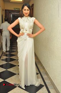 Actress Pragya Jaiswal Stills in Beautiful White Dress at turodu Audio Launch  0041.JPG