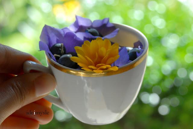 dzbanek z jagodami, jadalny leśny dzwonek, leśny deser, jadalne kwiaty, dzikie rośliny jadalne, bellflower recipe