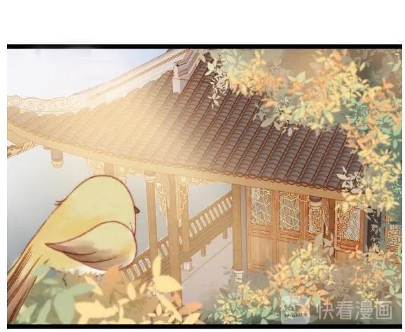 Nàng Phi Cửu Khanh - Thần Y Kiều Nữ chap 22 - Trang 3