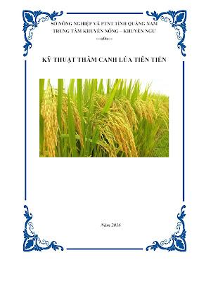 [EBOOK] KỸ THUẬT THÂM CANH LÚA TIÊN TIẾN, TRUNG TÂM KHUYẾN NÔNG - KHUYẾN NGƯ, SỞ NN&PTNT TỈNH QUẢNG NAM