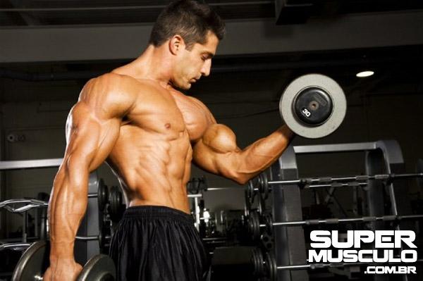 Treino Biceps