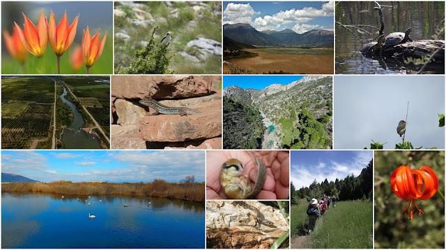 Ευρωπαϊκή Ημέρα Natura 2000: Ανάδειξη της σχέσης των νέων κυρίως ανθρώπων με τη φύση