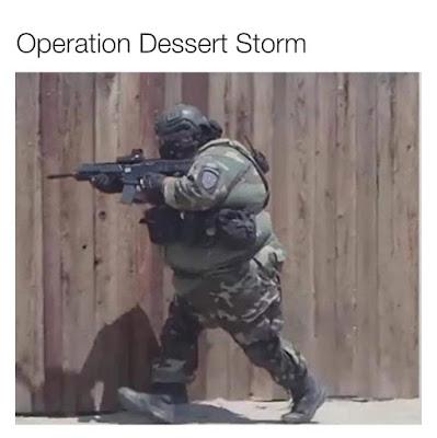 Operation Dessert Storm