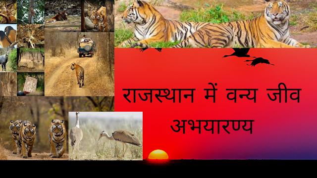 राजस्थान में वन्य जीव अभयारण्य