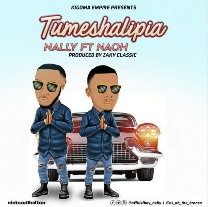 Download Mp3 | Nally ft Naoh - Tumeshalipia