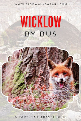 A Wicklow Mountains Bus Tour