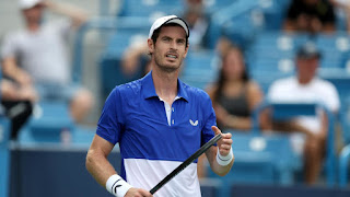Murray out of Australian Open 2020 due to injury