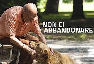 Risultati immagini per Cani e anziani abbandonati in estate, arriva la campagna di sensibilizzazione a loro dedicata