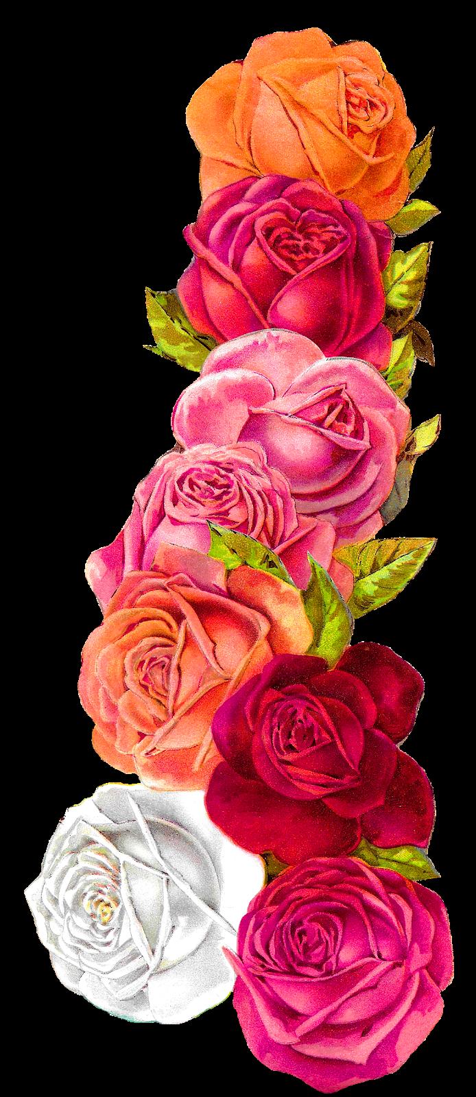 Antique Images: Romantic Vintage Rose Shabby Chic Wedding Floral ...