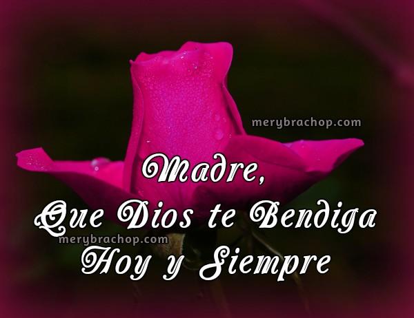 imagen de rosa con palabras lindas de bendiciones para mi madre, mamá