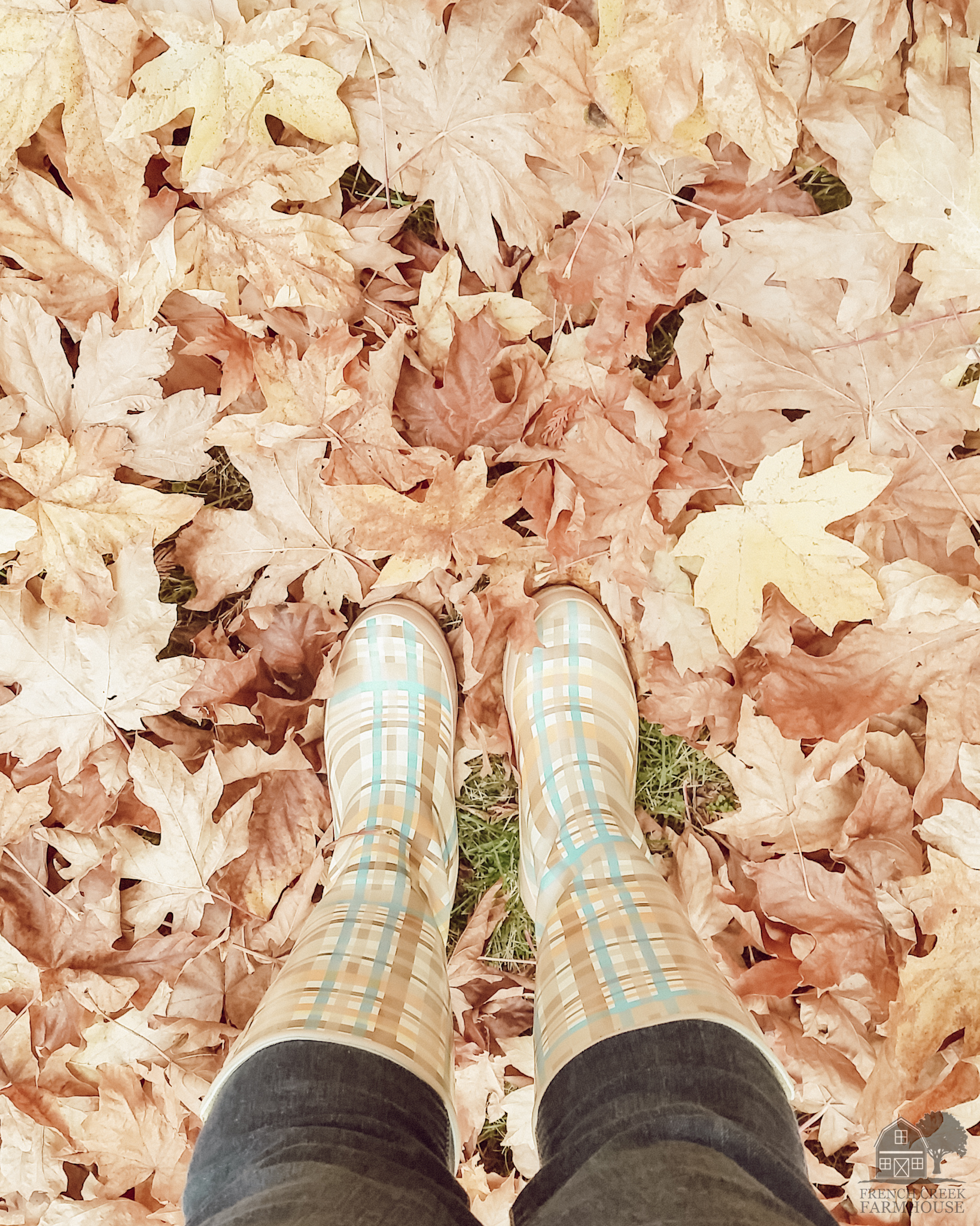 Rainboots standing in autumn leaves