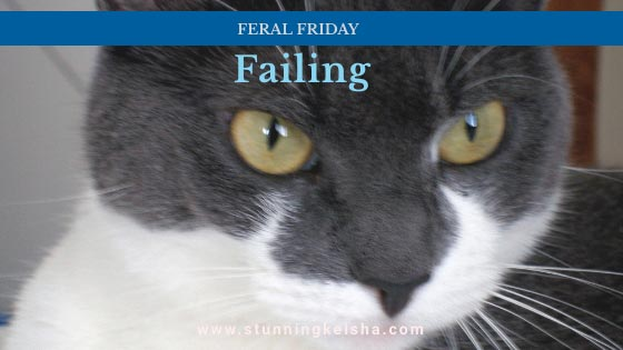 Failing on Feral Friday