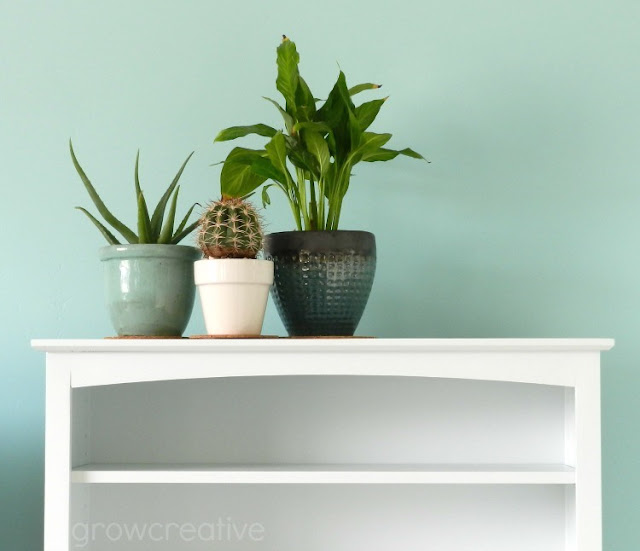 House Plants and White Shelf: growcreativeblog