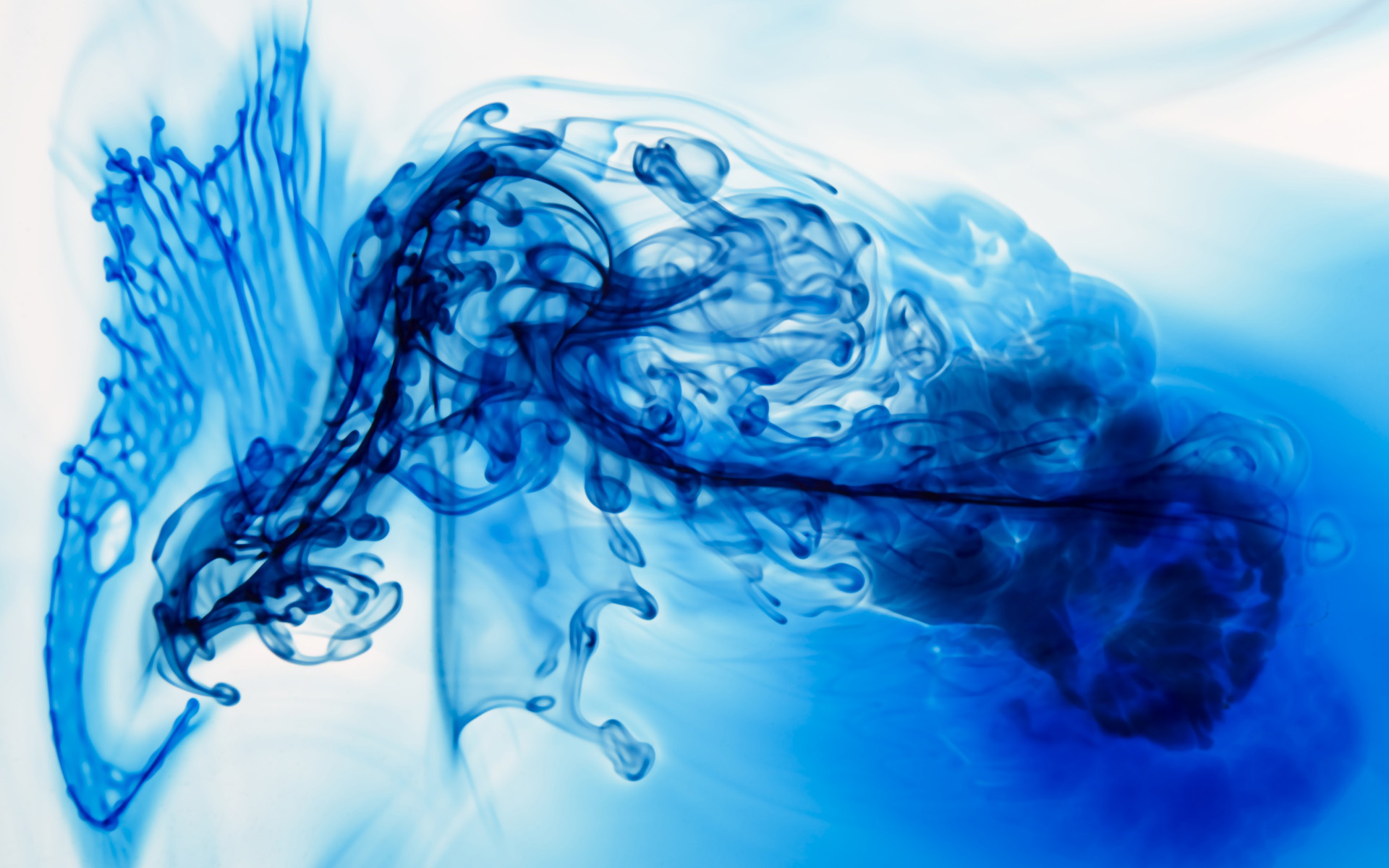 Abstract Wallpapers - Ink In Water