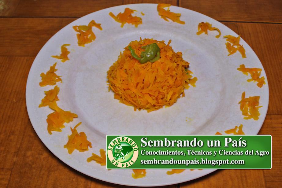 Receta zanahorias ralladas y asadas