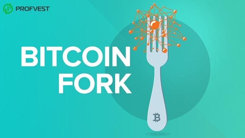 Криптовалюта Bitcoin Cash BCH
