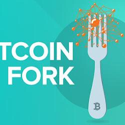 Bitcoin Cash (BCH): что нужно о нем знать, как его вывести и продать