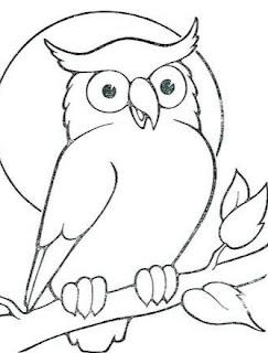 sketsa burung hantu
