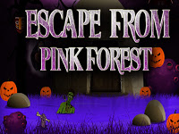 Top10NewGames Escape From Pink Forest