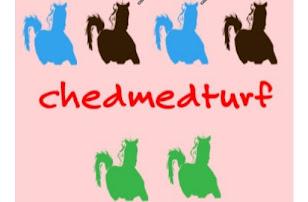 www.chedmedturf.net