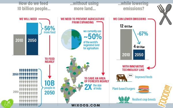 create a sustainable food by 2050
