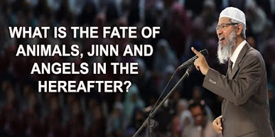 WHAT IS THE FATE OF ANIMALS, JINN AND ANGELS IN THE HEREAFTER?