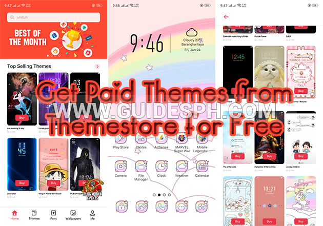 How to Get Paid Themes from Themestore for Free