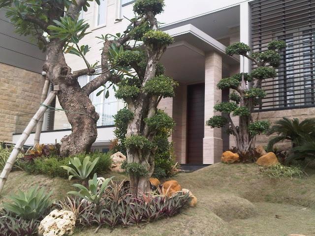 Taman halaman rumah surabaya