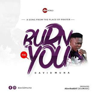Download Burn For You By David Muna