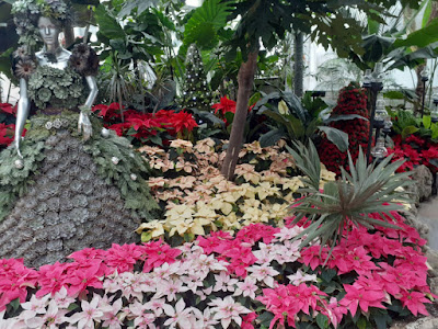 Allan Gardens Conservatory 2019 Winter Flower Show twentyfive by garden muses--not another Toronto gardening blog