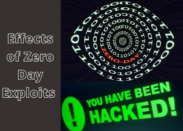 Effects of Zero Day Exploits and Vulnerabilities