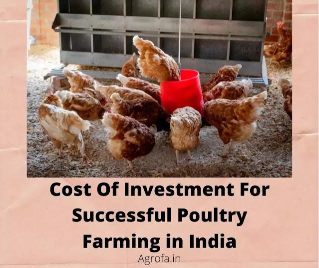 Investment for poultry farm in India