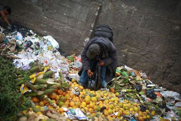 According to the Food Waste Index Report 2021 released by the United Nations Environment Program (UNEP), 93.1 million tonnes of food wasted in the world in the year 2019.