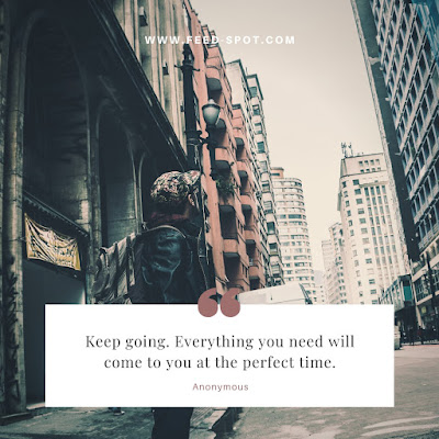 Keep going. Everything you need will come to you at the perfect time. __ Anonymous