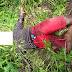 Corpo em estado de decomposição é encontrado na zona rural de Cajazeiras