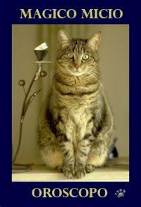 oroscopo-gatti-online
