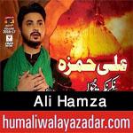 http://www.humaliwalayazadar.com/2016/10/ali-hamza-nohay-2017.html