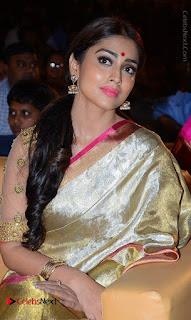 Actress Shriya Saran New Images in Silk Saree at Gautamiputra Satakarni Audio Launch  0010.jpg