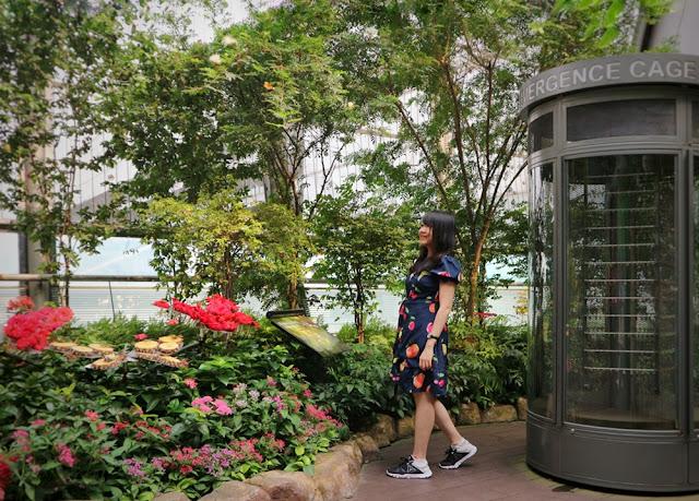 Tempat Wisata Instagrammable yang Wajib Dikunjungi di Singapore #TravelokaBlogContest2019