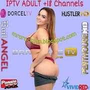 Free ADULT IPTV +18 m3u download PLAYLISTS Updated 21/04/2021